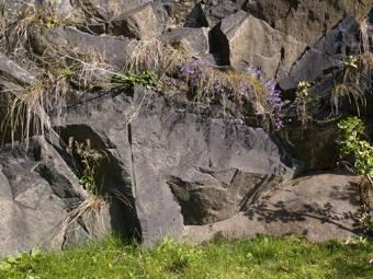 Tre basalt dating